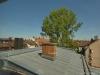 ROOMS4 - Charmantes Stadthaus mit 11 Wohnungen in Nürnberg Glockenhof - Dachterrasse