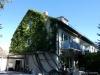 ROOMS4 - Großzügiges REH im trendigen Stadtteil Moosach - Gartenseite