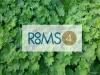 ROOMS4 - Großzügiges REH im trendigen Stadtteil Moosach - Logobild-Blätter